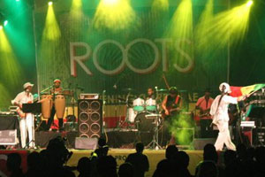 gallery-roots2011